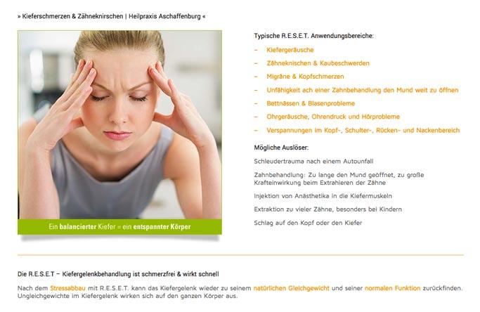 webdesigner wordpress frankfurt