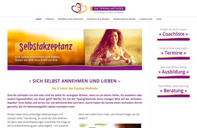 Wordpress Wp-Agentur Webdesigner