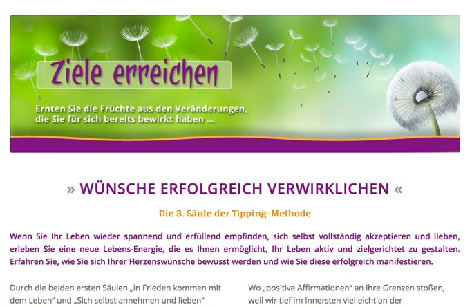 Wp-Agentur Frankfurt Webdesignert